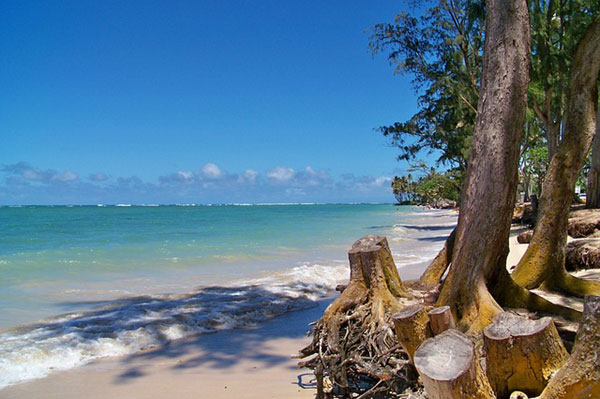 free-photo-hawaii-beach